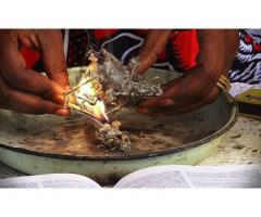 Healer For Witchcraft & Bad Luck Removal In Pietermaritzburg Call +27782830887